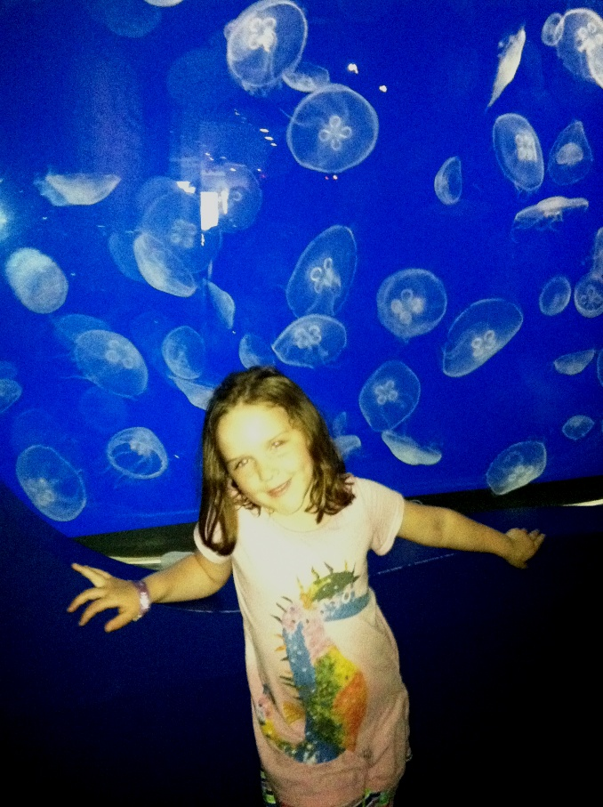 Mad with moon jellies